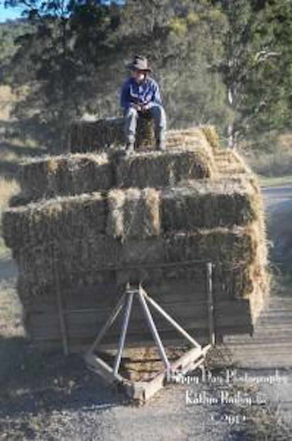 hay02-199x300.jpg